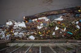 Председатель Горсовета назвал главную экологическую проблему Калининграда