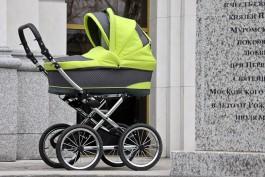 Жительница Калининграда пыталась вывезти из магазина продукты в детской коляске