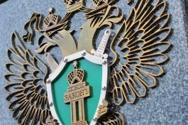Прокуратура проверит администрацию Зеленоградска после наезда машины на людей в Холмогоровке
