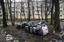 Эколог: Поляки хотят заниматься переработкой мусора в Калининградской области