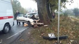 На трассе Балтийск — Калининград «Ауди» врезалась в дерево: пострадала женщина
