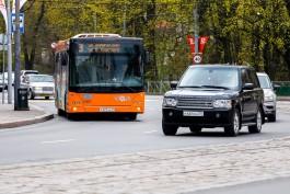 В общественном транспорте Калининграда выросло число пассажиров
