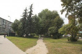 Власти предлагают калининградцам придумать концепцию сквера на Советском проспекте