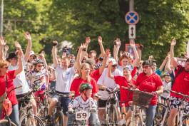 Калининград предложили сделать велосипедной столицей России