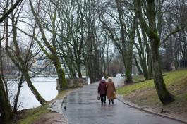 В Калининграде обещают облачную неделю с небольшим дождём