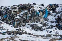 В регионе хотят построить сортировочный завод мощностью до 350 тысяч тонн мусора в год