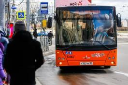В Калининграде перевозчики увеличат количество транспорта на маршрутах и продлят работу до 23:00