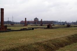 В Польше нашли обломки советского бомбардировщика, участвовавшего в освобождении Освенцима