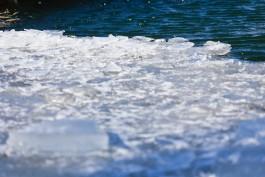 Спасатели сняли со льдины в Куршском заливе пятерых рыбаков