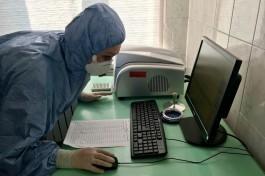 За сутки в Калининградской области выявили рекордное количество заболевших коронавирусом