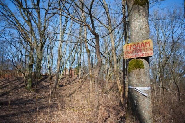 Прокуратура потребовала забрать у иностранцев несколько земельных участков в Калининграде