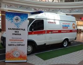 В ТЦ «Европа» в Калининграде продлили выездную вакцинацию от гриппа