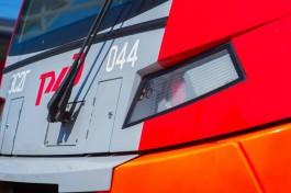 Поезд «Ласточка» отправили на ремонт после столкновения с коровой под Калининградом