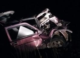 В Нестеровском округе водитель без прав врезался в придорожное дерево и погиб