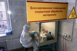 За сутки в Калининградской области выявили 92 случая коронавируса