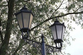 Калининградские экологи хотят обязать муниципалитеты давать охранный статус паркам и скверам