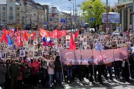 «Чтобы помнили»: как прошло шествие «Бессмертного полка» в Калининграде