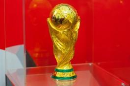 «Путёвка в Россию»: определились все участники ЧМ-2018 по футболу