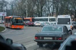 Власти Калининграда перенесли конкурс по маршрутной сети на год