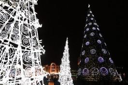 Калининград оказался в числе самых выгодных направлений для отдыха на Новый год
