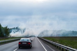 В Калининградской области решили ввести особый противопожарный режим