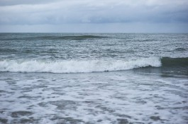СМИ: В Балтийском море распространяется смертельно опасная бактерия