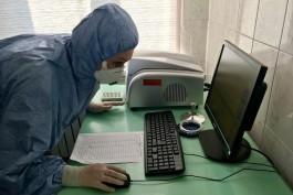 В Калининградской области выявили 198 случаев коронавируса за сутки