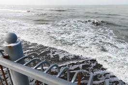 Во вторник в Калининградской области ожидается усиление ветра до 17 м/с