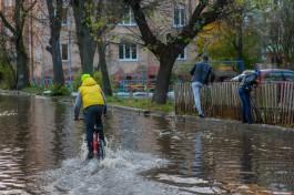 В среду в Калининграде снова прогнозируют обильные осадки и сильный ветер