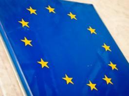 Еврокомиссия отказалась спонсировать постройку забора между Литвой и Калининградом