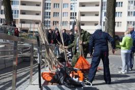 «С топорами и пилами»: как прошёл общегородской субботник в Калининграде