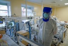 В Калининградской области зарегистрировали 97 новых случаев коронавируса