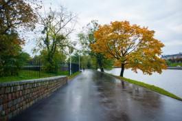 Власти Калининграда не могут определиться с покрытием тротуаров на Нижнем озере