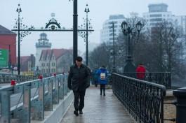 На выходных в Калининградской области ожидают прохладную погоду с небольшими осадками