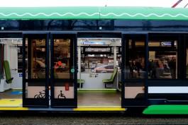 ФАС обязала мэрию аннулировать закупку на поставку трамваев и автобусов для Калининграда