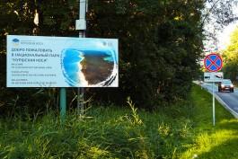 В Литве хотят в 2,5 раза увеличить плату за въезд на Куршскую косу