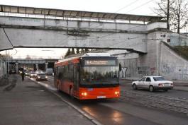 Почему водители автобусов в Калининграде «не видят» пешеходов?