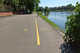 На набережной Нижнего озера в Калининграде наносят разметку для велосипедистов