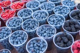 В Калининградской области в два с половиной раза вырос сбор плодов и ягод