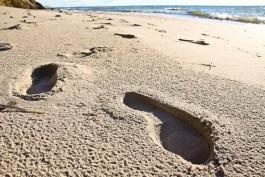 Врио губернатора: Сердце кровью обливается, когда смотрю на пляж в Светлогорске