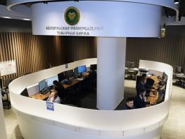«Новые перспективы»: почему калининградским компаниям стоит аккредитоваться на Белорусской универсальной товарной бирже