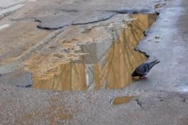 Власти Калининграда отчитались о ямочном ремонте на 12 улицах