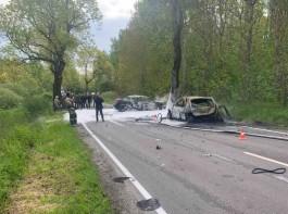 В полиции рассказали подробности ДТП с двумя погибшими на трассе Калининград — Балтийск