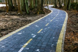 «Маршрут с препятствиями»: главные вопросы о велодорожке от Зеленоградска до Приморья