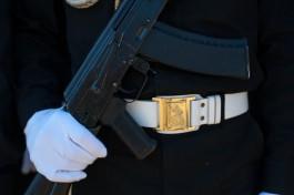 В Госдуме предложили владельцам оружия носить опознавательные знаки