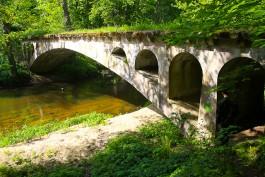 «Зубры, зелень, ЗОЖ»: как планируют привлекать туристов в Виштынецкий парк