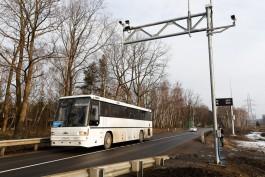 Областные власти планируют создать региональную транспортную компанию