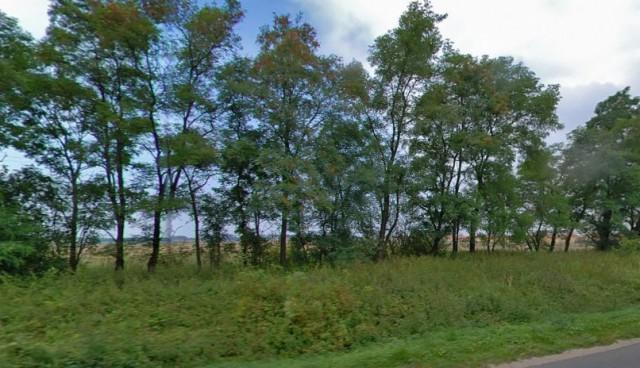 В Зеленоградске разрешили построить 17 жилых домов