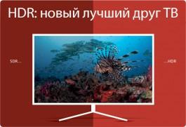 Калининградцам снова будут показывать местные новости по телевизору: появление «цифровой врезки» на федеральном телеканале ОТР