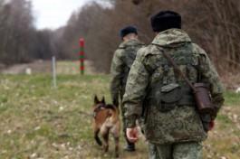 В Нестеровском округе задержали иностранца, который незаконно пришёл в регион из Литвы